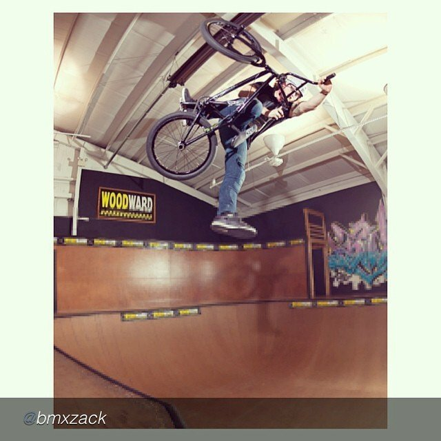 Hoffman Instagram by @bmxzack the...