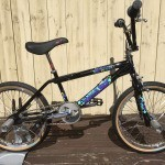 Hoffman Bikes 1994 Big Daddy Complete Bike